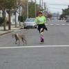 EBC 2014 walk run 179